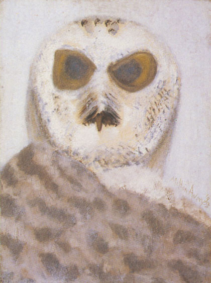 Owl